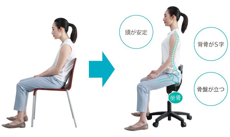 >アーユル・チェアーは、骨盤を立てた「坐骨」で座る正しい姿勢に導きます。